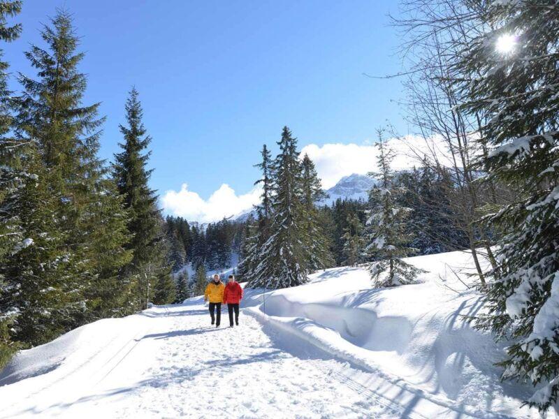 Winterwandern in Sörenberg – zu den berühmten Meringues