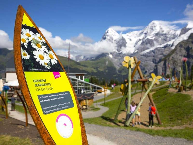 Der charmante Allmendhubel – mit FLOWER TRAIL