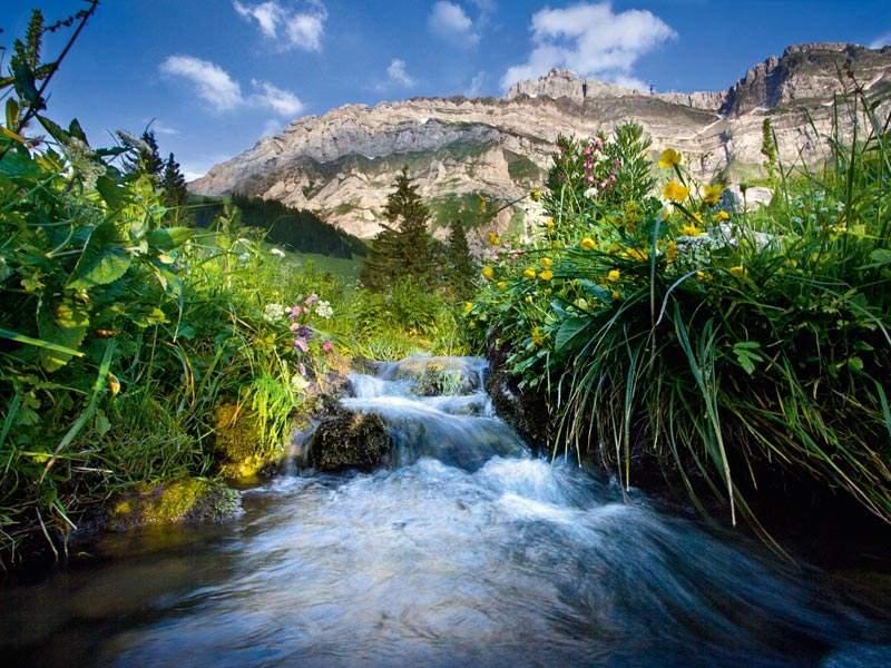 Appenzellerland im Sommer