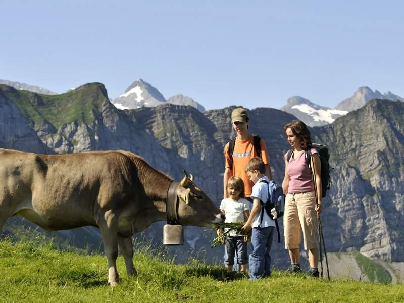 Klewenalp-Stockhütte – wandern, biken, bikeboarden