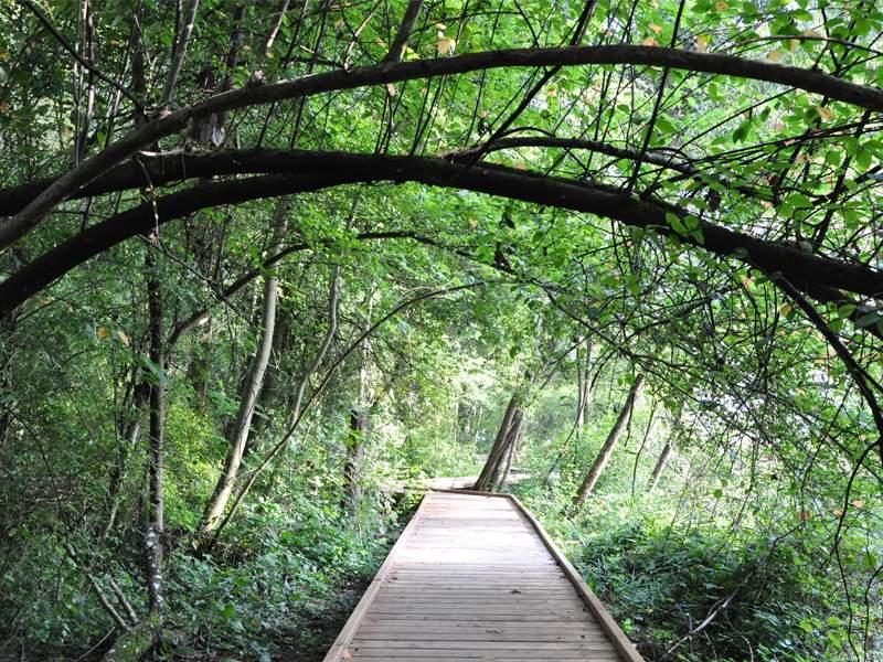 Naturzentrum Thurauen – Natur erkunden