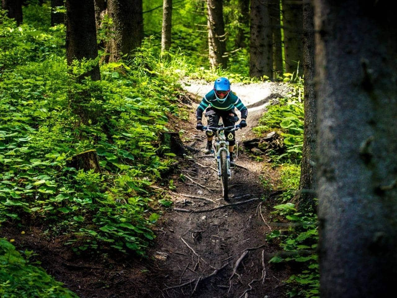 Trails am Churer Hausberg