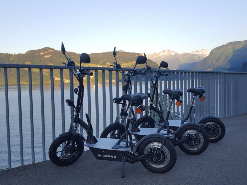 Tour mit Electro-Scooters im Winter