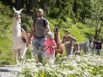 Swiss Family Camp – spannende Abenteuer