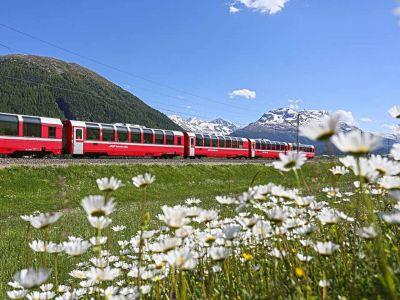 : Graubünden - Bernina Kräuter Express – in die Kräuterwelt des Valposchiavo