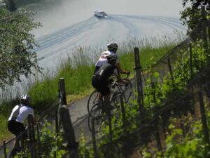 Ausflug: Piana del Laveggio Bike. Bikeweg im Mendrisiotto