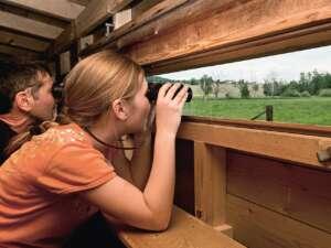Ausflug: BirdLife-Naturzentrum Neeracherried